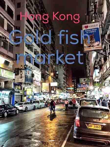 Hong Kong Fish Store