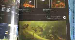 Biotope Aquarium Design Contest Magazine