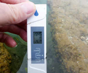 Testing water parameters where fish were collected.